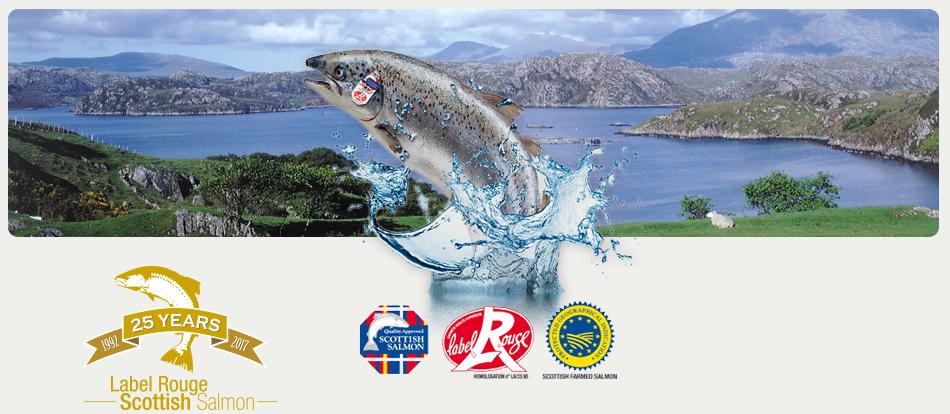 home Scottish salmon label red label