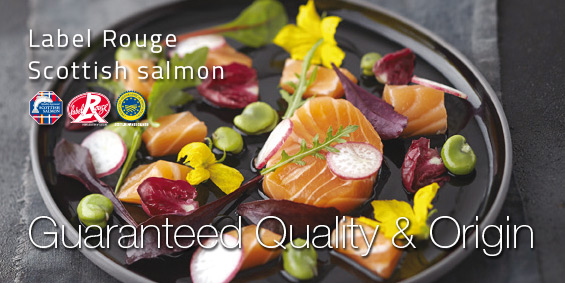 Presentation guaranteed quality & origin